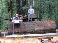 Jeff Meyer's partner Bryan preparing a Redwood.