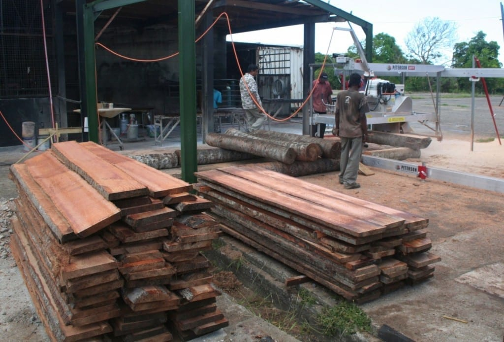 Pacific Green Timbers in Fiji loading logs into the sawmill.