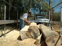 Ken Hodges impressed with waste amounts on Peterson Sawmill.