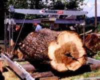 Timo Scheiber milling Big Leaf Maple log with his Peterson Sawmill.