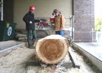 Russell Wilkins and Chris Browne, milling with the Peterson Sawmill.