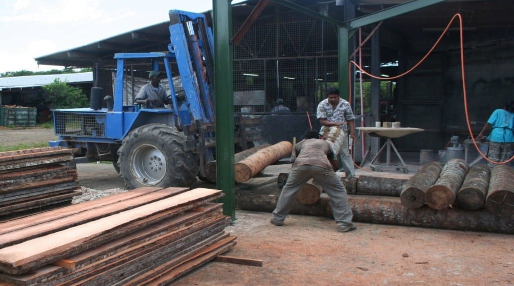 Pacific Green, Fiji - log loading with forklift & then manually rolling.