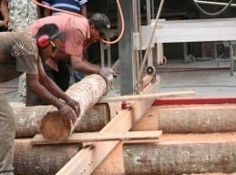 Pacific Green, Fiji - Loading logs