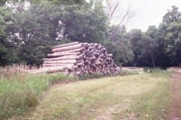 A customers stack of pine logs at Wilkins Tree Farm.