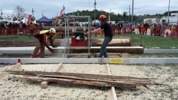Peterson Sawmills at the Great Portable Sawmill Shootout