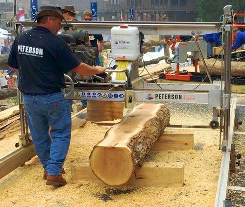 lucas sawmill