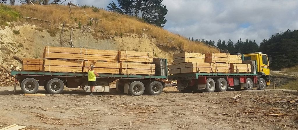Truck load of timber from Peterson's High Production Sawmill