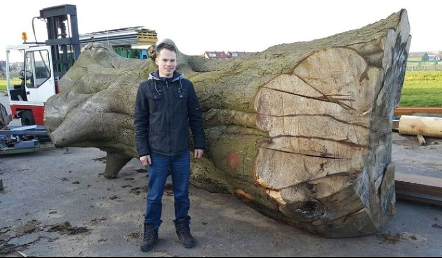 Mark van Zee with the Big Beech log which inspired his slabbing project