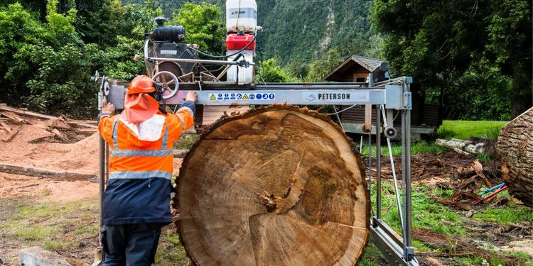 sawmilling machinery for sale