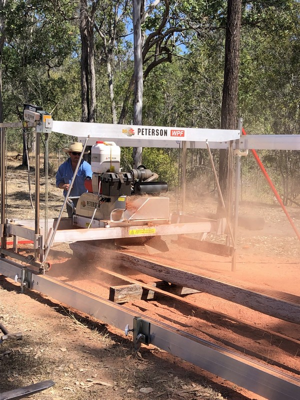 timber industry news