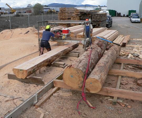 portable sawmill setup