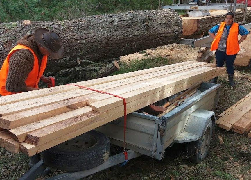 lumber nz