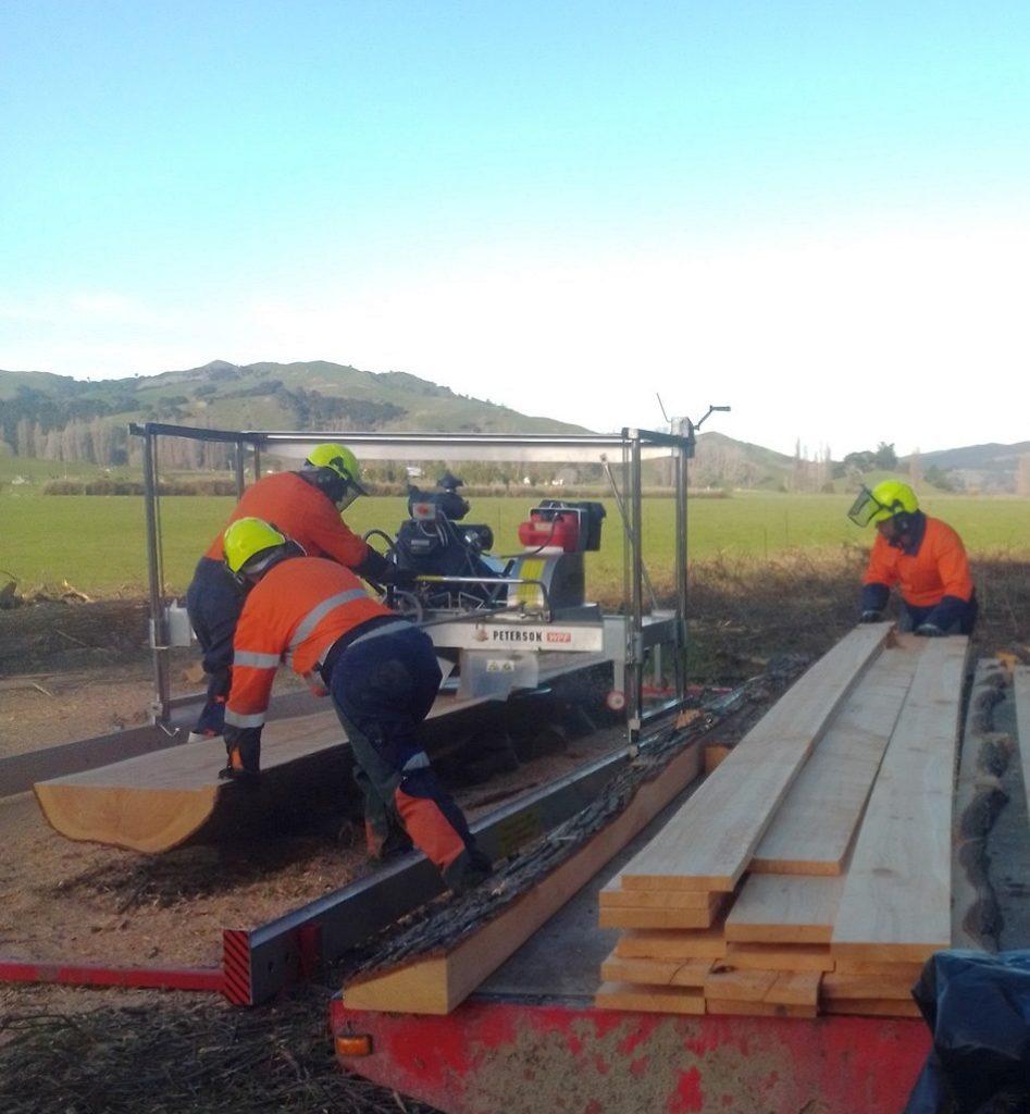 sawmill training nz